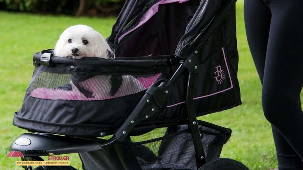 luxury dog strollers