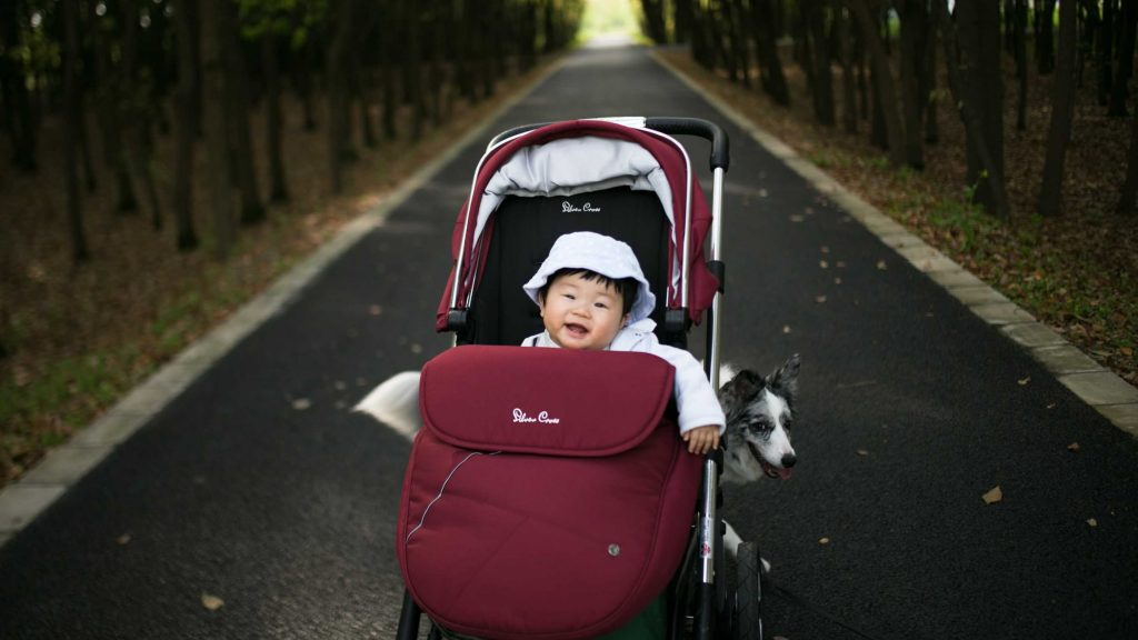 Why stroller is imortant